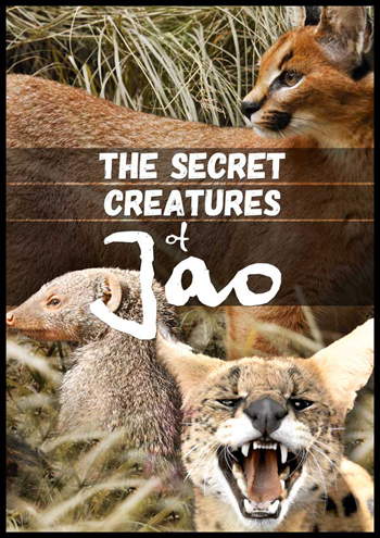 The Secret Creatures of Jao